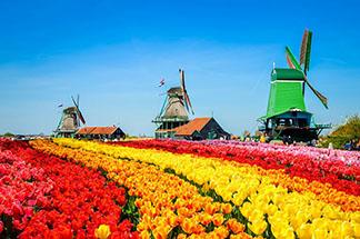 AMSTERDAM - Parada florilor
